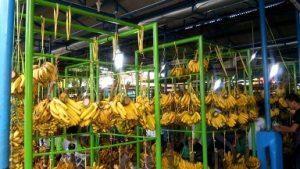 belanja buah dan sayur di lokbin pasar minggu